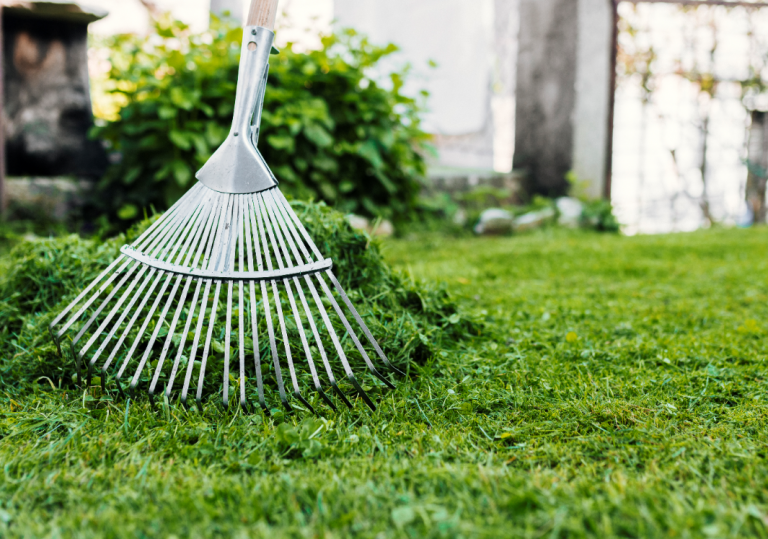 Rake and Lawn 768x539 - Give Your Home a Lockdown Makeover