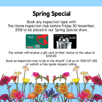 The Hub's exclusive Spring Special