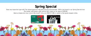 Spring Promotion Website Homepage 1 300x120 - Spring Promotion - Website Homepage