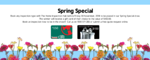 Spring Promotion Website Homepage 2 300x120 - Spring Promotion - Website Homepage