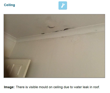 Waterproof Your Home Image 5 - Has My House Sprung A Leak?