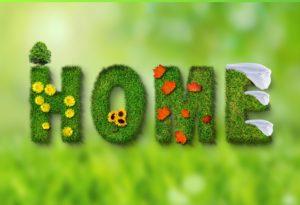 spring 846051 960 720 300x205 - spring-846051_960_720
